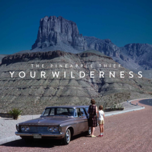 Your_Wilderness_cover.jpg