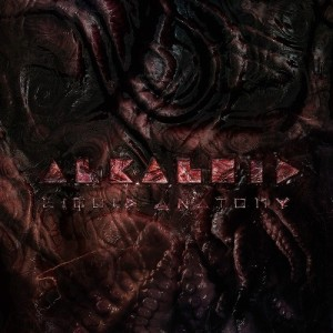 Alkaloid-Liquid-Anatomy