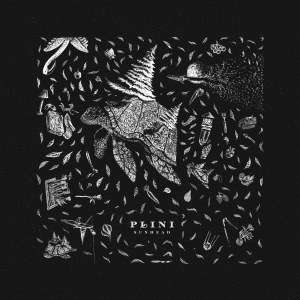 Plini-Sunhead